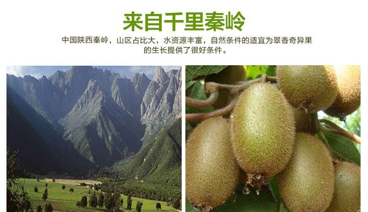 2021周至县翠香猕猴桃预售,找我就对了