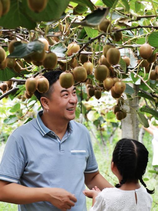 预售2021周至翠香猕猴桃
